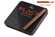 Xì gà Villiger Black Mini Sumatra TpHCM - 0901241888 - 256 Pasteur, Quận 3