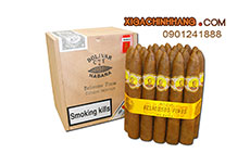 Xì gà Bolivar Belicosos Finos  hộp 25 điếu TPHCM 0901241888 - 256 Pasteur Q3